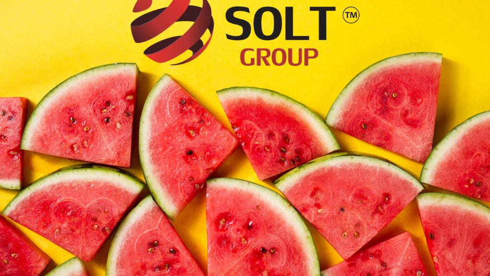 Solt Group